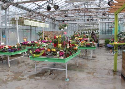 horticulture (9)